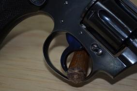 Colt Police Positive